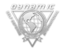 Dynamic Self Defense - New Albany, OH